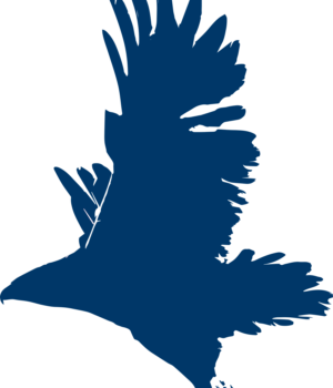 blue falcon icon