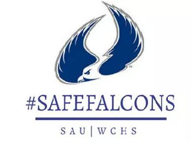 Safe Falcons
